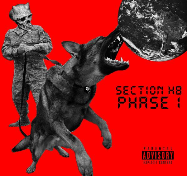"SECTION H8 ´Phase 1´ [7""]"